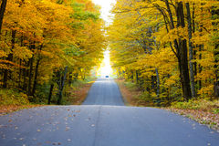 Road in Autumn Stock Photography