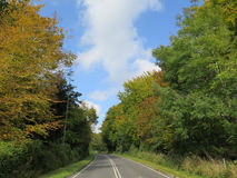 Road in Autumn colors Stock Image