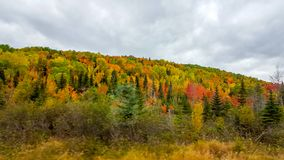 On the road, autumn colors, Tadoussac Quebec Royalty Free Stock Photography