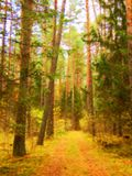 Road in autumn coniferous forest in the style of impressionism Royalty Free Stock Photos