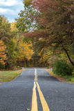Road in Autumn. A road crossing through the woods in autumn Royalty Free Stock Images
