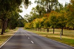 Empty road in the countryside during Autumn, Australia royalty free stock photography