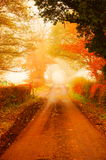 Road in Autumn fog B Royalty Free Stock Photography