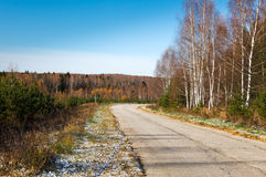 Road in the autumn forest Royalty Free Stock Images