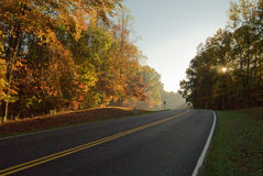 Road through autumn forest. Highway receding into distance through forest, autumn scene Stock Image