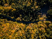 Road in the autumn forest aerial drone view stock photography