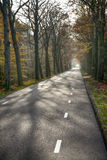 Road in an autumn forest background Royalty Free Stock Photo