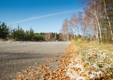 Road in the autumn forest Stock Images