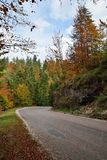 Road in Autumn Forest. Autumn Forest with Colorful Leaves on Trees and Curved Road Stock Image