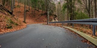 Road in autumn forest landscape Royalty Free Stock Images