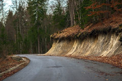 Road in autumn forest landscape Royalty Free Stock Photos