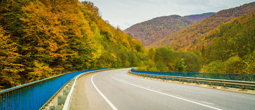 Road and autumn forest and mountains Stock Photography