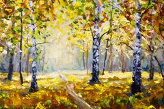 Autumn forest, white birch trees in autumn forest, golden autumn, orange autumn nature. Road in the autumn forest. Green meadow gr royalty free illustration