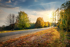 Road and autumn Royalty Free Stock Photography