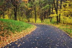 Road in autumn park. Royalty Free Stock Photo