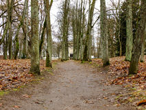 Road in Autumn Park Stock Photography
