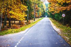 Road through autumn Reserve Stock Photo