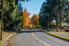 Road Into Autumn. A street in Burien, Washington leads toward Autumn trees stock photos