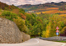 Road and autumnal trees in Piedmont, Italy. Royalty Free Stock Photo