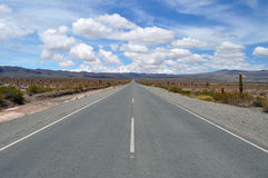 The road away in the valley of cacti in the Andes Stock Images