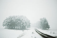 Road in bad weather conditions in winter Royalty Free Stock Photography