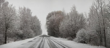 Road in bad weather conditions in winter Royalty Free Stock Image