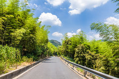 Road through the bamboo forest Royalty Free Stock Photo