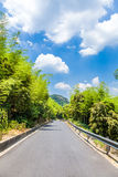 Road through the bamboo forest Royalty Free Stock Photography