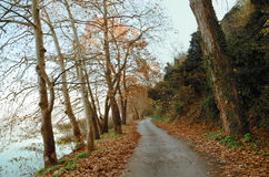 Road on the banks of lake Royalty Free Stock Photo