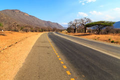 Road through the baobab forest valley in Tanzania Stock Image
