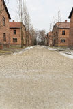 Road between Barrack Blocks at Auschwitz 1 Royalty Free Stock Photo