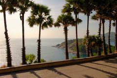 The road beside the beach, take a walk with palm trees and ocean views. In before sunset Stock Photo