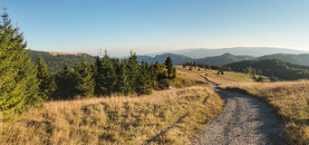 Road through the beautiful early evening in the mountains Royalty Free Stock Photography