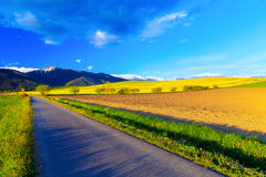 Road in a beautiful land with meadows and blooming field. And snow mountain in background. Slovakia, Central Europe Royalty Free Stock Photo