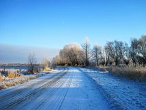 Road and beautiful snowy trees, Lithuania Stock Images