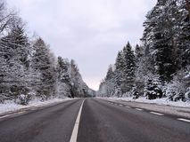 Road and beautiful snowy trees in winter, Lithuania Stock Image