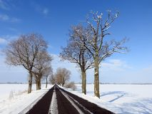 Road and beautiful snowy trees in winter, Lithuania Royalty Free Stock Photos