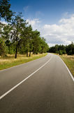 Road. Beautiful road somewhere in Ukraine Stock Images