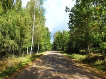 Road and beautiful trees in autumn, Lithuania stock photo