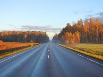 Road and beautiful trees in autumn, Lithuania royalty free stock photography