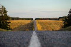 Road in Belarus. Stock Photos