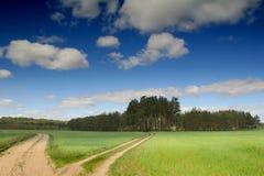 Road Between Meadows Stock Photos