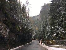 A road through the Bicaz Gorge Royalty Free Stock Photo