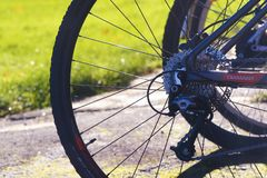 Road Bicycle, Bicycle, Bicycle Wheel, Bicycle Frame Royalty Free Stock Photography