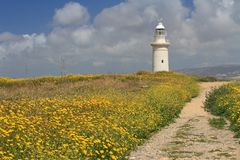 Road through the blooming field to the lighthouse. Cyprus Stock Photos