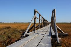 Road from the boards through the swamp. Marimetsa in Estonia Royalty Free Stock Photography