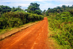 Road on Bolaven plateau Stock Image