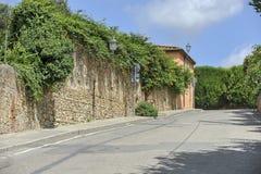 Road in Bolgheri, Italy royalty free stock photo