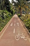Road in botanical garden in Malaga spain Royalty Free Stock Images