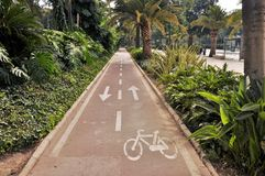 Road in botanical garden in Malaga spain Stock Images